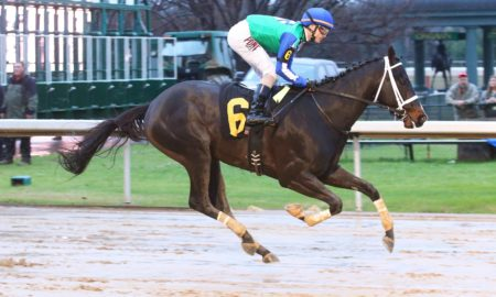 UNCONTESTED - The Smarty Jones - 10th Running - Listed - 01-16-17 - R08 - OP - Photo Credit: Coady Photography