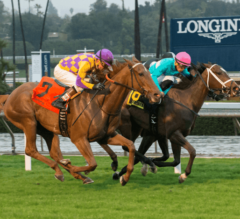 Decked Out Rallies to Win G1 American Oaks by Nose