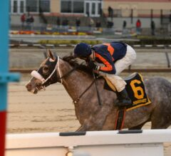 El Areeb Earns 10 Derby Points With Impressive G3 Jerome Win