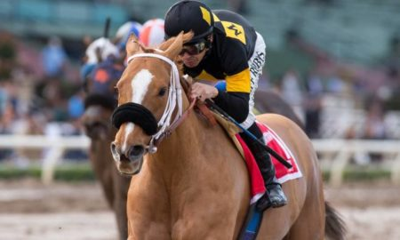 Finest City and Mike Smith - G2 Santa Monica Stakes Stakes - Santa Anita Park - Zoe Metz Photography