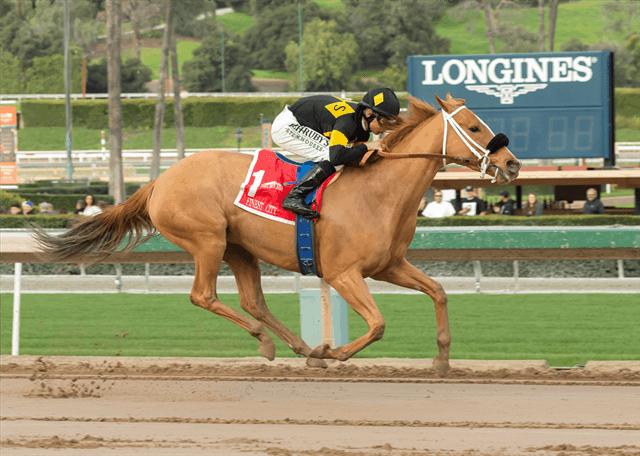 Finest City and Mike Smith - G2 Santa Monica Stakes Stakes - Santa Anita Park - Benoit Photo