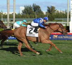 Shadwell Turf Mile Stakes Preview: Massive Field Creates Tremendous Betting Opportunity