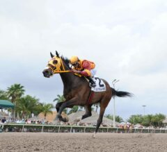 TCA Stakes Preview: Competitive Field Takes Aim at Breeders' Cup