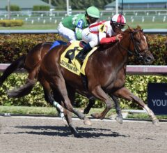 Favorable Outcome Makes Return a Winning One in G2 Swale