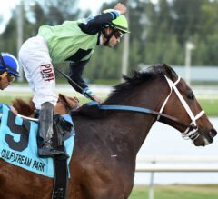 Gulfstream Park Turf Handicap Preview: Flatlined Looks for Two in a Row