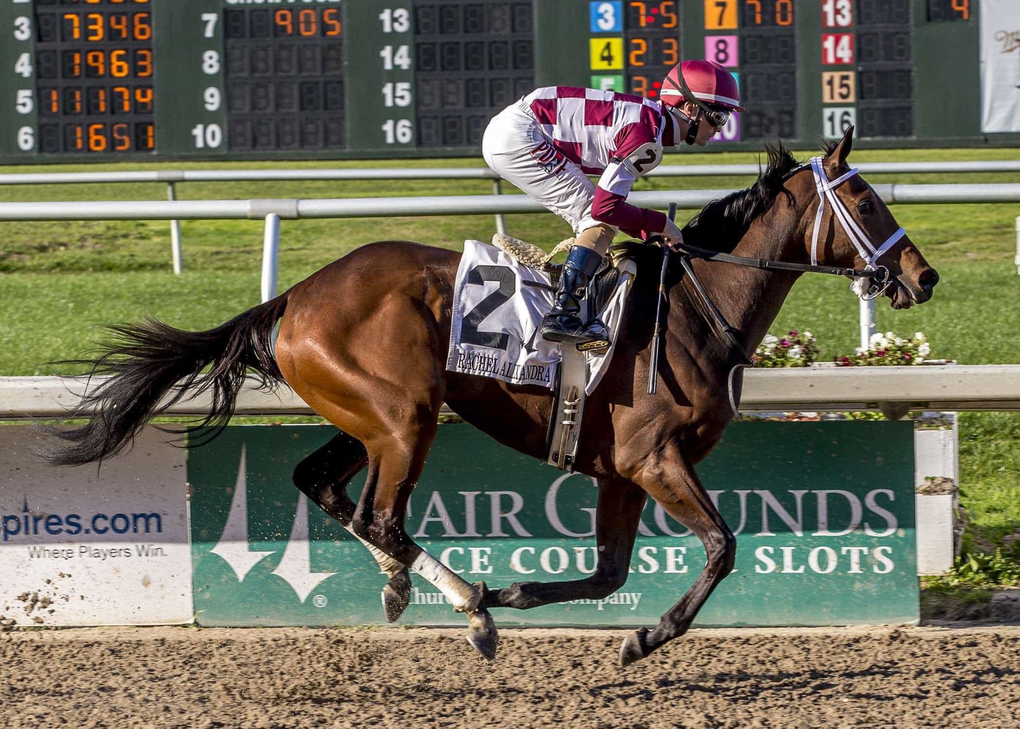 2/25/2017 - Farrell with jockey Channing Hill aboard wins the 37th running of the Grade II Rachel Alexandra Stakes at fair Grounds. Hodges Photography / Lou Hodges, Jr.