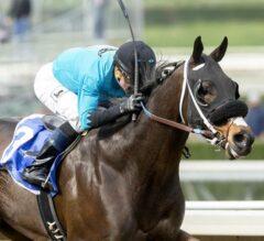 Heavily Favored St. Joe Bay Too Good in G2 Palos Verdes Stakes