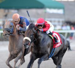 Unified Holds Off Mind Your Biscuits in G3 Gulfstream Park Sprint