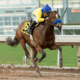 VALE DORI and MIKE SMITH win Santa Maria Stakes © Benoit Photo