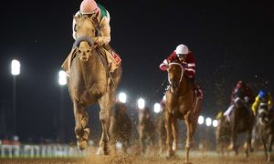 Arrogate (USA) (Bob Baffert - Mike Smith) wins the Dubai World Sponsored by Emirates Airline at the DWC at Meydan on March 25th 2017 Dubai Racing Club and Andrew Watkins