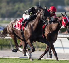 Shoemaker Mile Preview: Breeders' Cup Mile Win and You're In Race