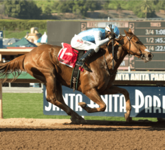 Denman's Call Upsets Masochistic in G1 Triple Bend Stakes