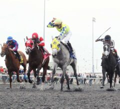 Fast and Accurate Shocks G3 Spiral, Heading to Kentucky Derby