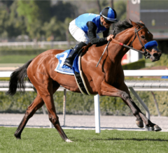 Goodyearforroses Takes G2 Santa Ana Stakes With Convincing Win