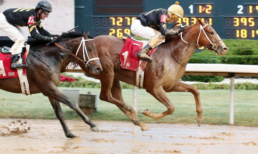 HENCE-Steve Asmussen - OP- 500 Wins at Oaklawn - 011617 - Credit Coady Photography