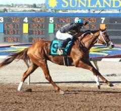 Hence Wins G3 Sunland Derby, Earns Spot in Kentucky Derby