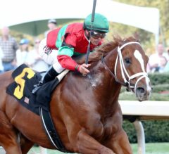 Kentucky Derby Update: Malagacy and Battalion Runner out of Derby