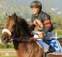 Shaman Ghost Wins G1 Big 'Cap Over Midnight Storm With Powerful Late Surge