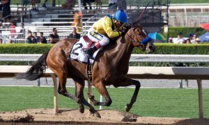 Vale Dori wins Santa Margarita - Chris Aplin