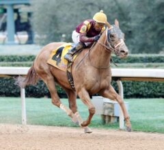 Oaklawn Barn Notes: Whitmore Pointed Toward G3 Count Fleet