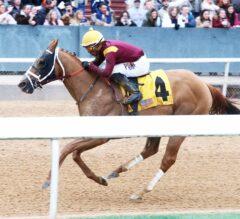 Whitmore Impressive in $125,000 Hot Springs Stakes Romp