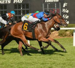 Fifty Five Sets Stakes Record in G3 Florida Oaks
