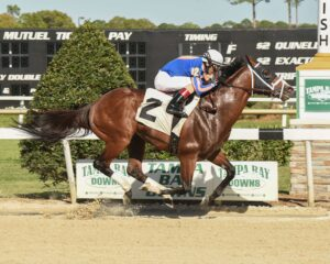 Stanford wins Challenger Stakes - Tampa Bay Downs - 3-11-17 - Photo Credit: SV Photography