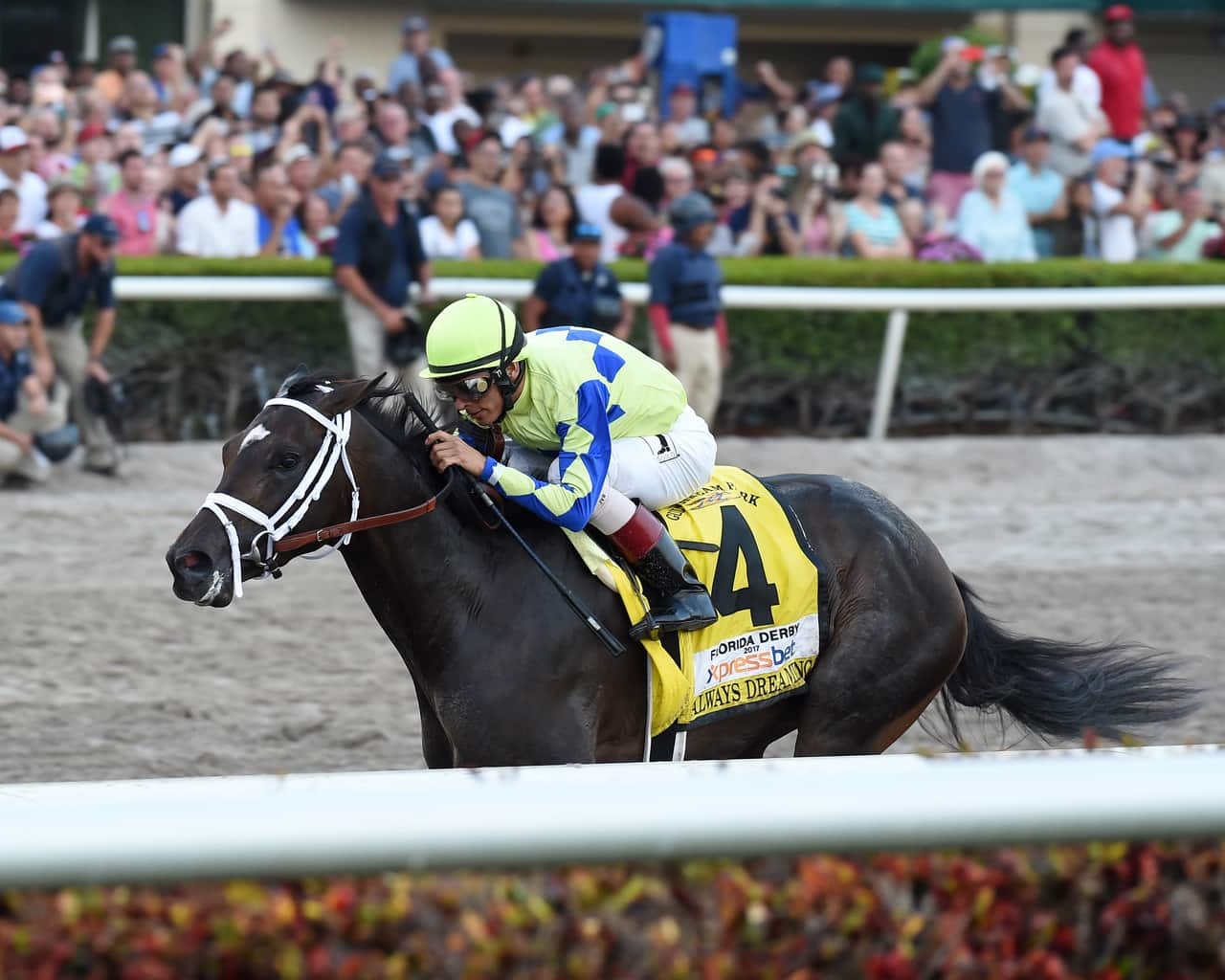 Racing Dudes Three Stars Of The Week Thoroughbred Racing Dudes