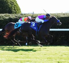 Tapit Preview: Big Score Heads Back East
