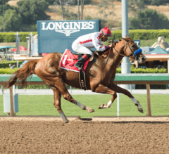 Collected Impressive Again in G2 Californian Romp
