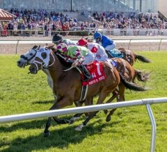 Enterprising Wins Three-Horse Photo in G2 Muniz Memorial Handicap