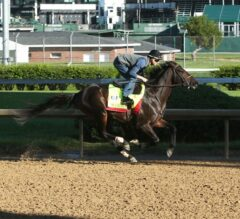 Kentucky Derby Update: McCraken Breezes Five Furlongs