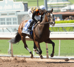 Kentucky Oaks Preview: Paradise Woods Ready for the Challenge