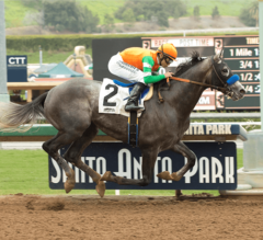 Santa Anita Derby Preview: Your Guess is as Good as Mine
