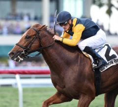 Sadler's Joy Nails Them at Wire to Win G2 Pan American