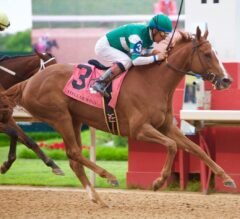 Champion Stellar Wind Returns a Winner in G1 Apple Blossom