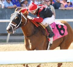 Preakness Meet Update: Whitmore, A.P. Indian Square off in G3 Maryland Sprint