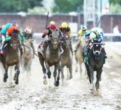 Preakness Stakes Update: Always Dreaming 'Sitting on Go'