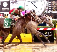 Actress Holds off Lights of Medina in Thrilling G2 Black-Eyed Susan