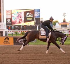 Preakness Stakes Update: Always Dreaming Shows Pre-Derby Edge