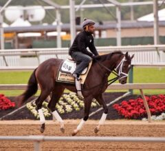 What Kind of Pace Will We See in the Preakness?