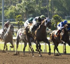 Ransom The Moon Sprints Home to Take G2 Kona Gold Stakes