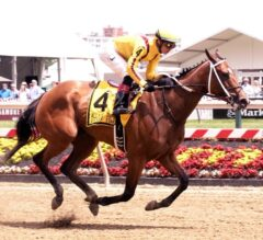 Terra Promessa Romps Wire-To-Wire in G3 Allaire DuPont Distaff