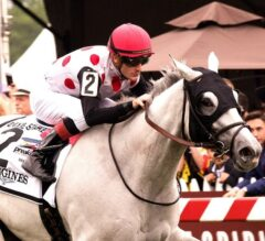 World Approval Shows Class in G2 Longines Dixie Win