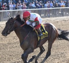 Connect Returns in Dominating G3 Westchester Win