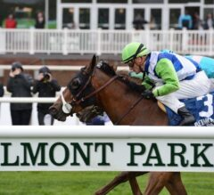 Belmont Park Releases 2020 Summer Stakes Schedule