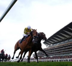 3 Mouth-Watering Clashes to Look Forward to at Glorious Goodwood
