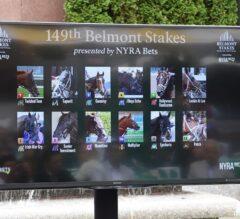 Irish War Cry Draws Post 7, Inherits Favorite at 7-2 in Belmont Stakes