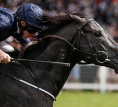 Royal Ascot Day 4 Recap: Caravaggio Remains Perfect in G1 Commonwealth Cup