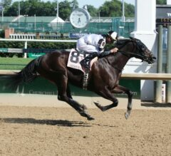 Limousine Liberal Wins Again at Churchill Downs in G3 Aristides
